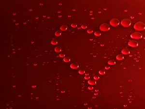 安卓爱情美图 唯美爱情 心 爱情 唯美温馨 唯美 可爱 浪漫手机壁纸