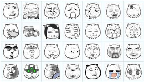 猥琐猫qq表情包下载_安全下载猥琐猫qq表情包图片