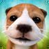 小狗模拟安卓版(apk)