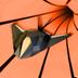 宇宙虫洞模拟 安卓最新官方正版