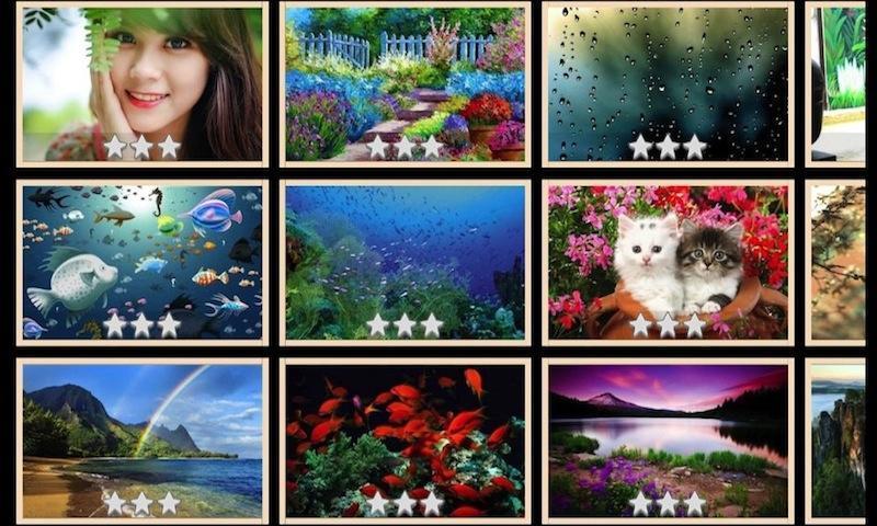 其中包括唯美的美女图片,卡通动漫,山水风景,超萌超有爱的动物等,如果