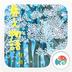 植树节-梦象动态壁纸