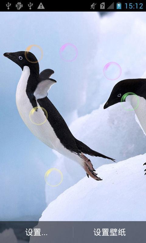 可爱企鹅动态壁纸