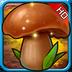 开心斗蘑菇