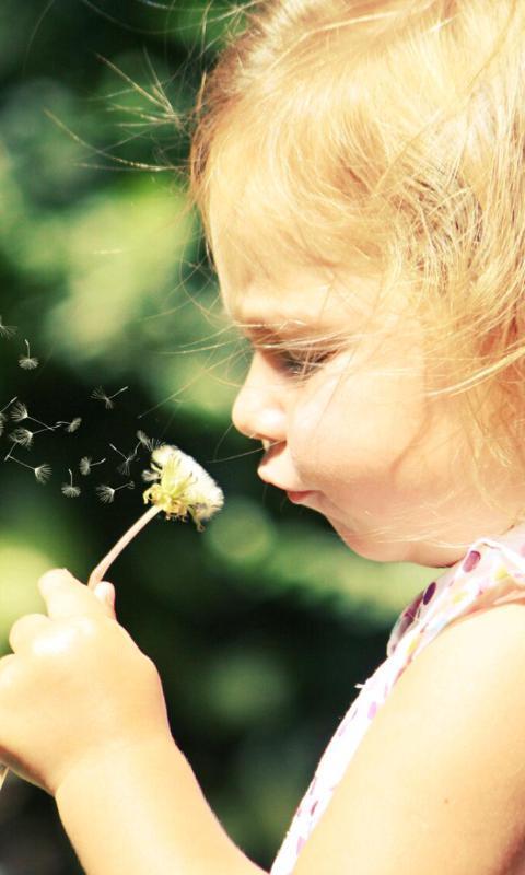 拿花的小女孩-绿豆动态壁纸